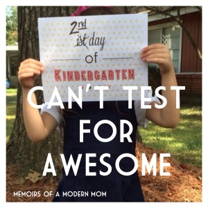 Kindergarten: Cant Test for Awesome